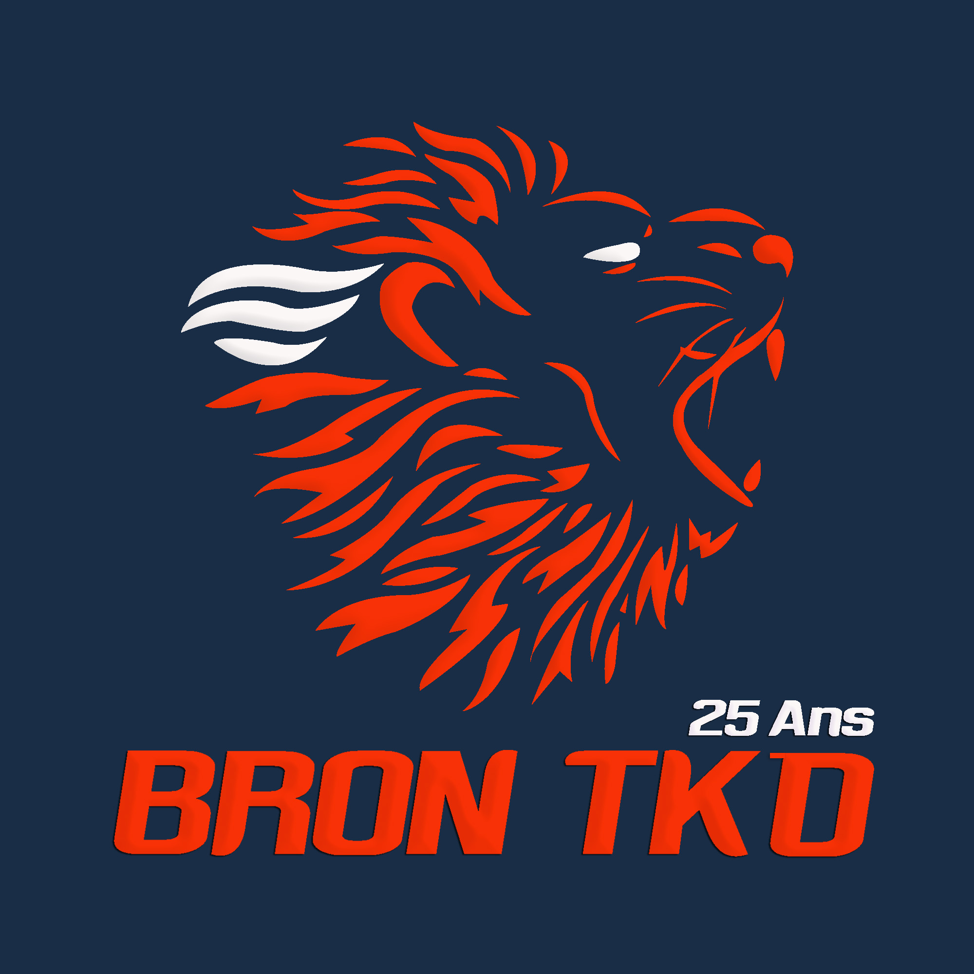 Logo Bron Taekwondo ash2